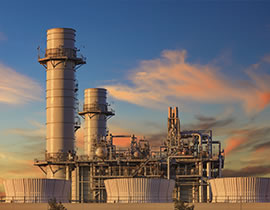 solution working plant